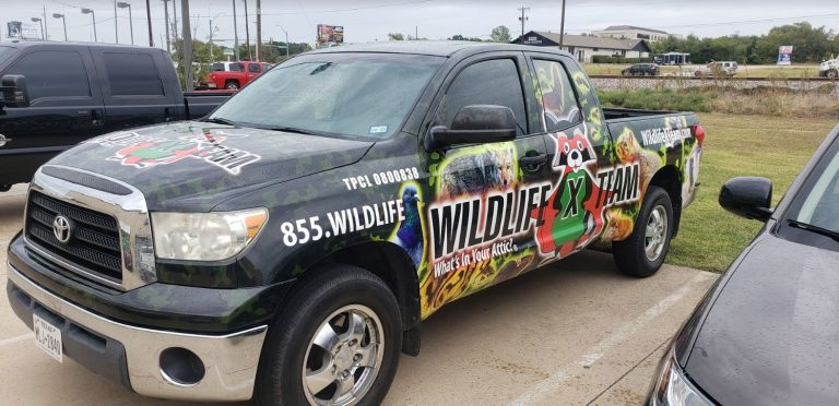 willide-central-texas-truck